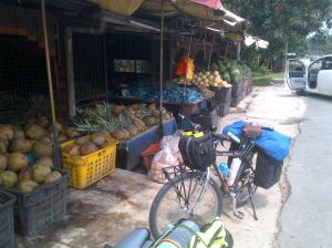 Petaling-20121115-00371