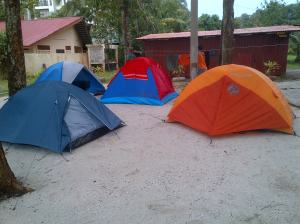 Sirusa-20121117-00434