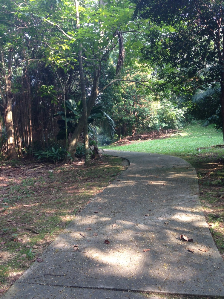 You find yourself in a jungle in the heart of Shah Alam